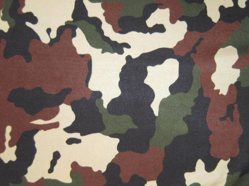 Camouflage Lycra